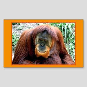Orangutan Rectangle Sticker