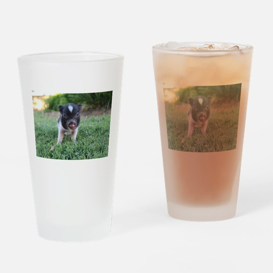 Gibbles Drinking Glass