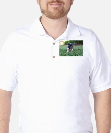 Gibbles Golf Shirt