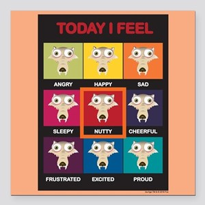 """Ice Age Scrat Today I Fe Square Car Magnet 3"""" x 3"""""""