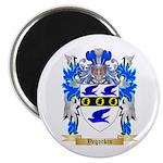 Yegorkin Magnet