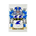 Yegorchenkov Rectangle Magnet (10 pack)