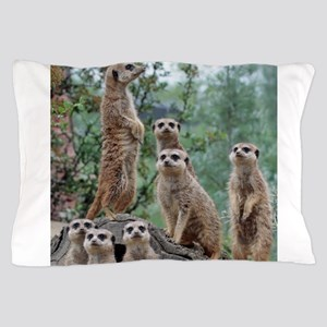 Meerkat010 Pillow Case