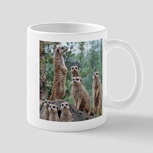 Meerkat010 Mugs