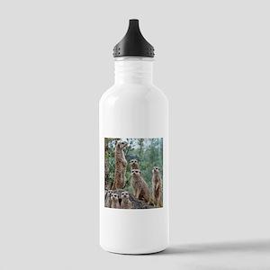 Meerkat010 Stainless Water Bottle 1.0L