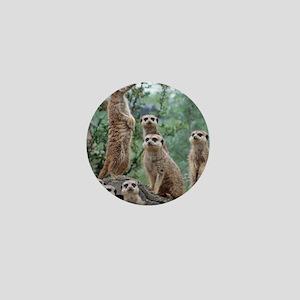 Meerkat010 Mini Button