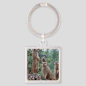 Meerkat010 Keychains