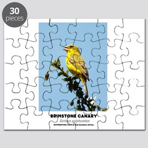 EXOTIC BIRDS - BRIMSTONE CANARY - Serinus s Puzzle