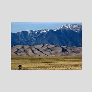 Colorado Sand Dunes Souvenir Phot Rectangle Magnet