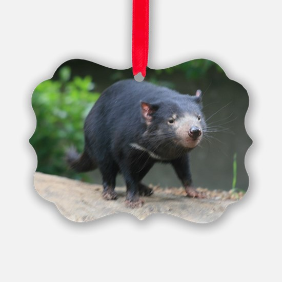 You Little Devil - Tasmanian Dev Ornament