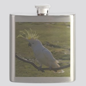 Yellow Sulphur-Crested Cockatoo from Austral Flask