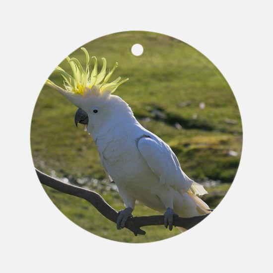 Yellow Sulphur-Crested Cockatoo fro Round Ornament