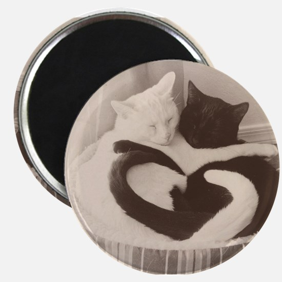 Love in Black and White (vintage) Magnets