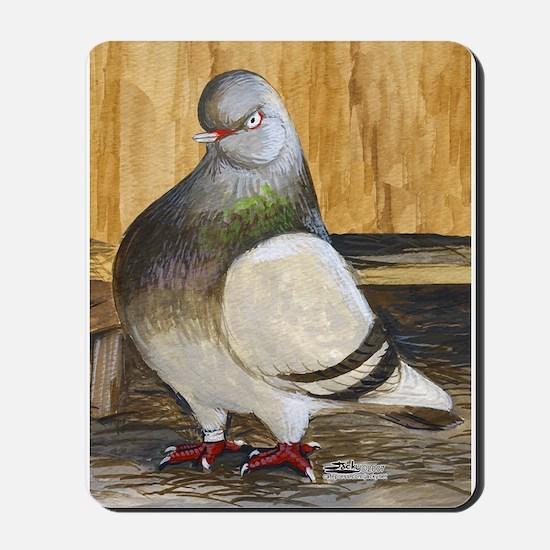 Barred Flight Pigeon Mousepad