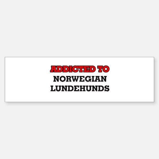 Addicted to Norwegian Lundehunds Bumper Bumper Bumper Sticker
