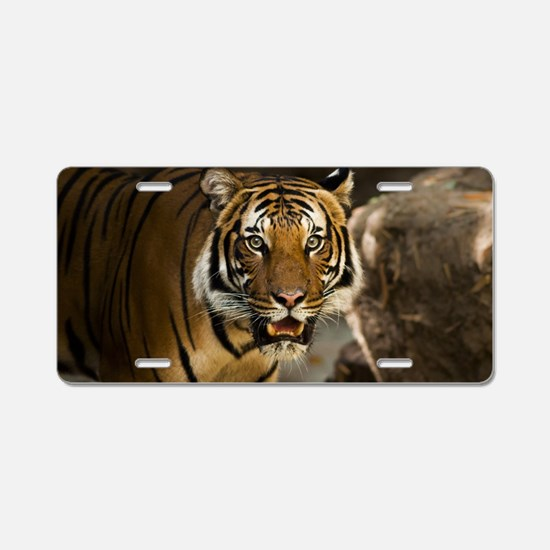 Unique Bengal tiger Aluminum License Plate