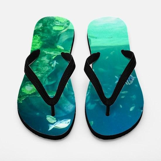 Atlantis Flip Flops
