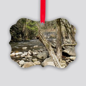 Smoky Mountains Stream Picture Ornament