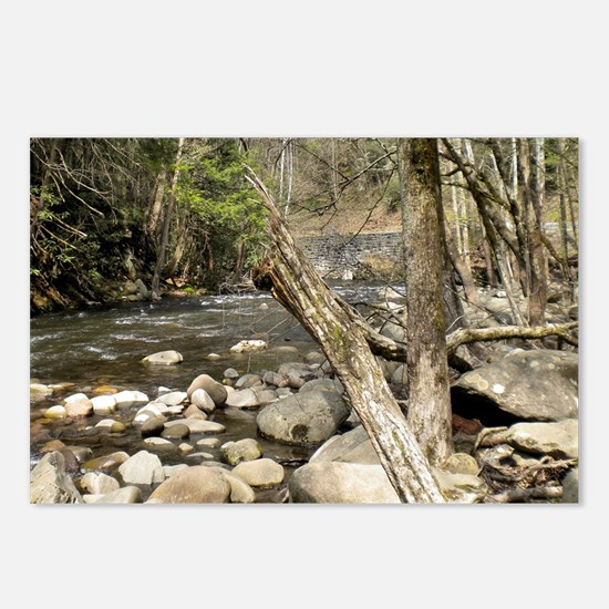 Smoky Mountains Stream Postcards (Package of 8)