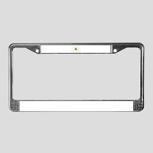 Single Bullet Holes in Glass License Plate Frame