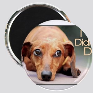 """I Didn't Do It"" Dachshund Magnets"