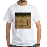Sitting Jackrabbit White T-Shirt