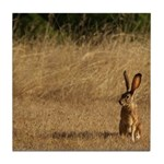 Sitting Jackrabbit Tile Coaster