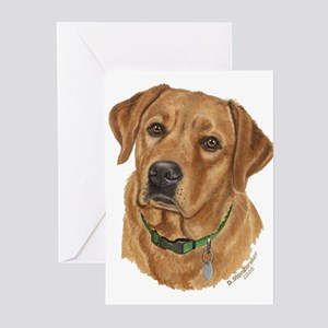 Fox Red Labrador Greeting Cards (Pk of 10)
