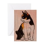 Calico Stare Greeting Cards
