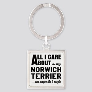 All I care about is my Norwich Ter Square Keychain