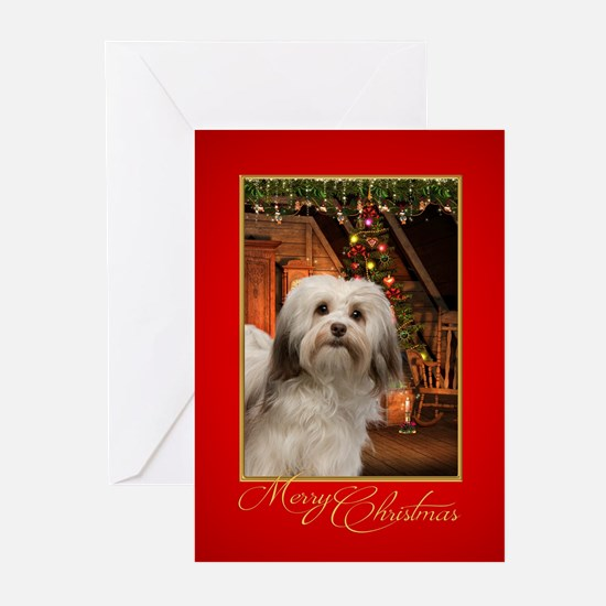 Havanese Christmas Greeting Cards
