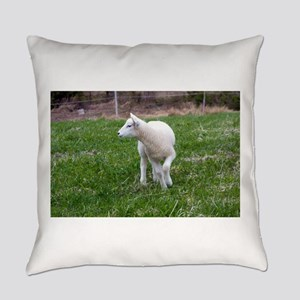lamb Everyday Pillow
