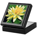 Water Lily Keepsake Box