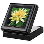 San Diego Water Lily Keepsake Box