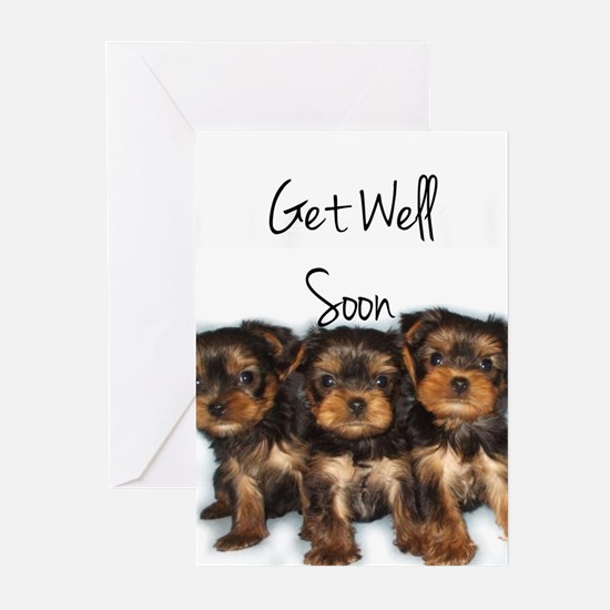 Get Well Yorkshire Terriers Greeting Cards