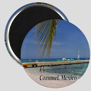 Cozumel Mexico Magnet