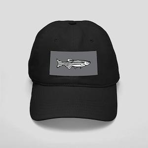 Zebrafish Black Cap