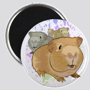 Guinea Pigs Magnets
