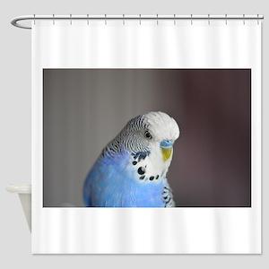 Wonderful Blue Budgie Style Shower Curtain