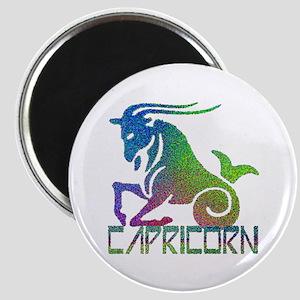 Capricorn Magnet