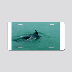 Natural Mother Dolphin and Baby Aluminum License P