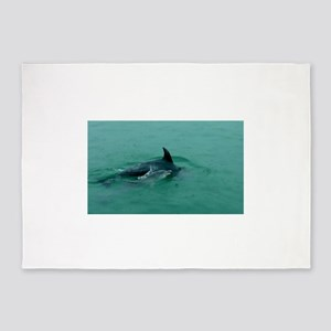 Natural Mother Dolphin and Baby 5'x7'Area Rug