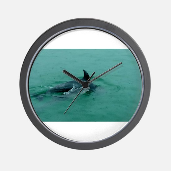 Natural Mother Dolphin and Baby Wall Clock
