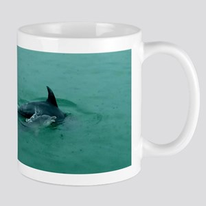 Natural Mother Dolphin and Baby Mugs