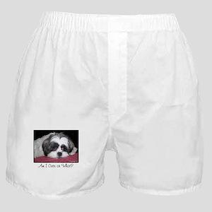 Cute Shih Tzu Dog Boxer Shorts