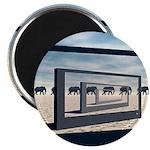 Surreal Elephant Desert Scene Magnets