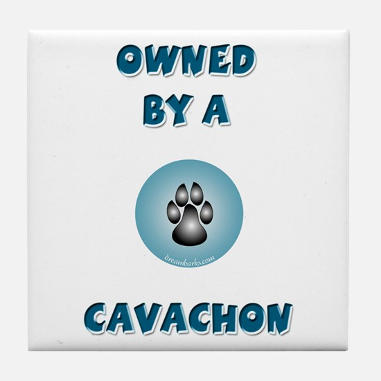 Owned by a Cavachon Tile Coaster