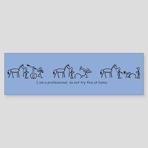 I am a Professional: Trainer / Bumper Sticker