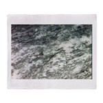 Black and White Rock at Beach Throw Blanket