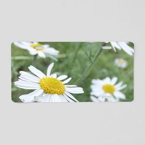 Camomile Garden Aluminum License Plate